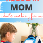 homeschool tips from a non-homeschool mom
