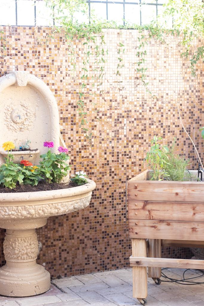 plants in fountain herb garden